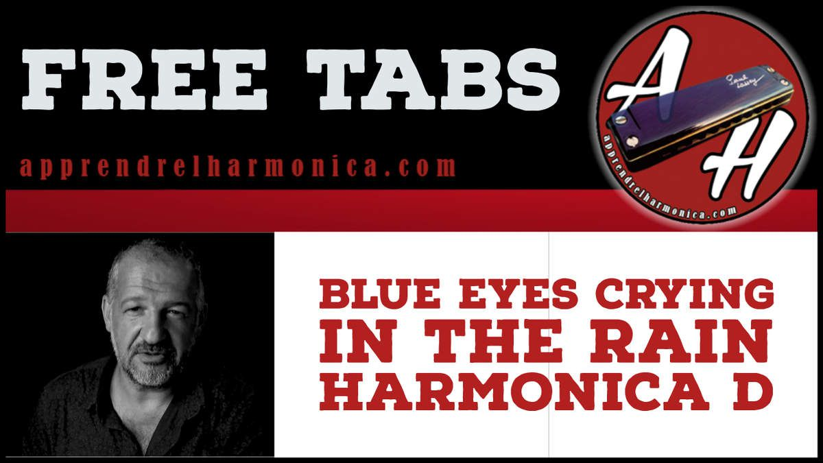Blue eyes crying in the rain - Harmonica D