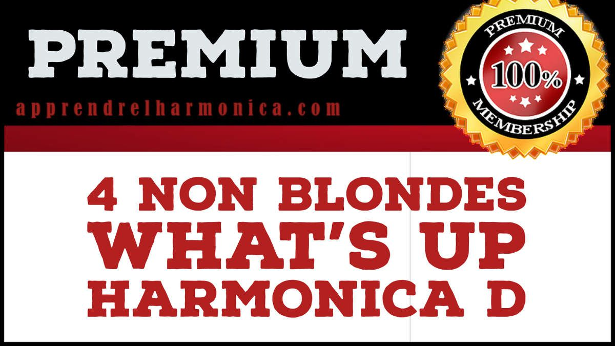 What's up - 4 non blondes - Harmonica D - Accès Premium