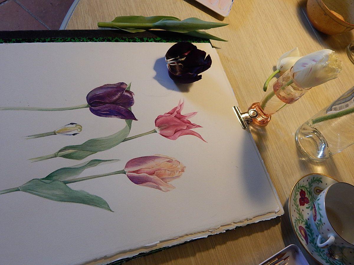 tulipemania