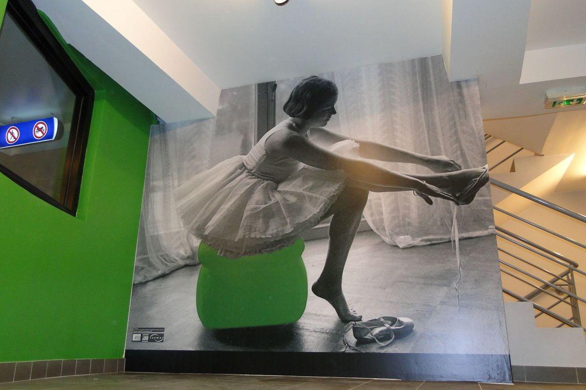 habillage mural bache imprimée