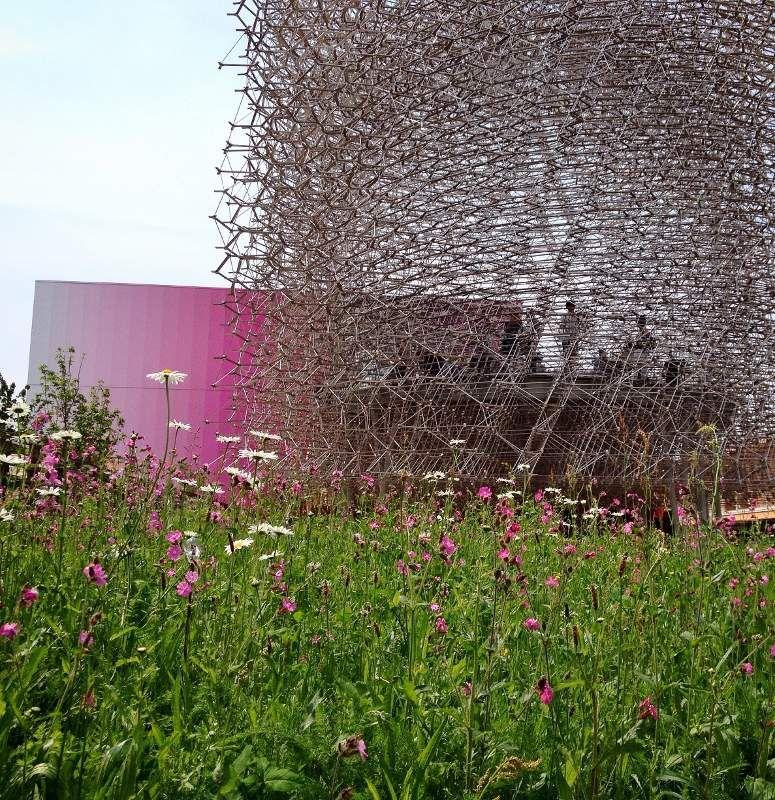 Expo universelle 2015 Milan Pavillon Royaume uni