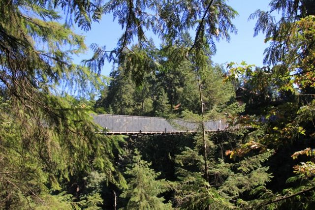 Pont suspendu de Capilano - Canada en Colombie Britannique