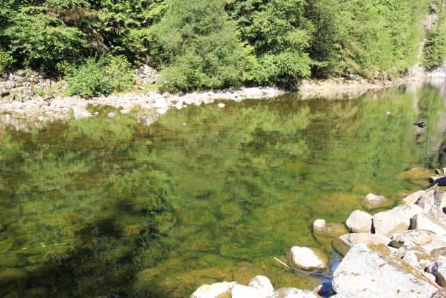 Rivière Capilano - Canada en Colombie Britannique