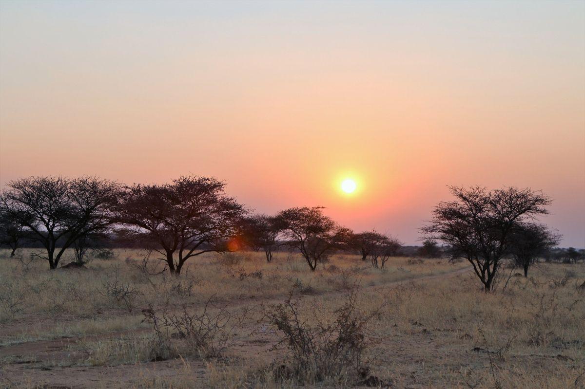 Levers et couchers de soleil à Okonjima - Namibie