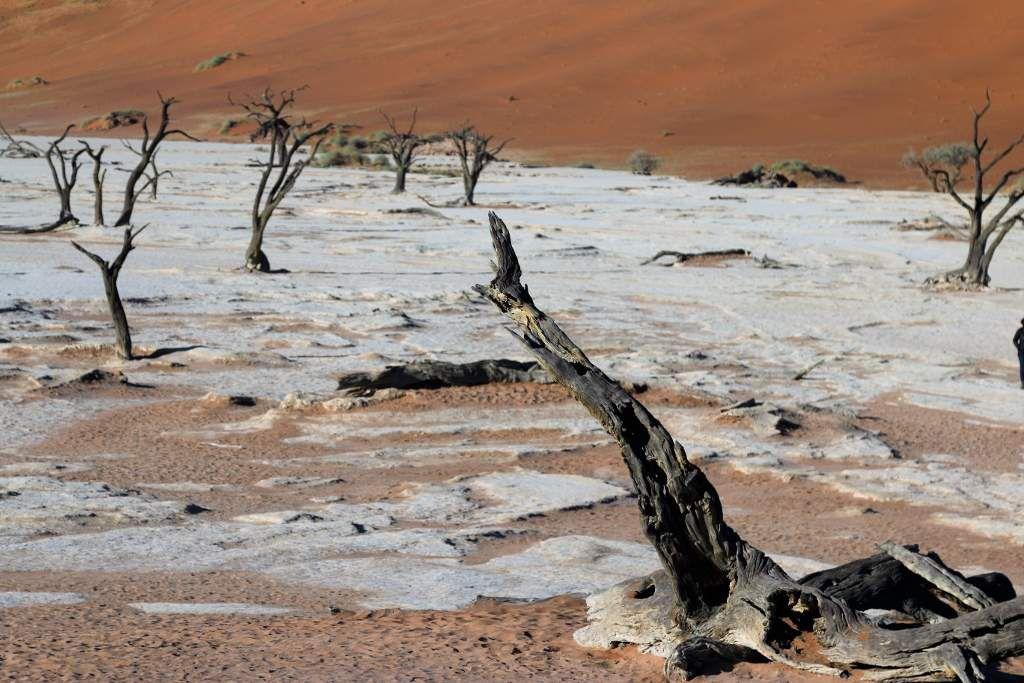 Désert Sossusvlei Namibie