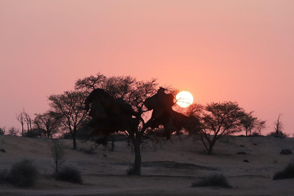 Couchers de soleil namibiens