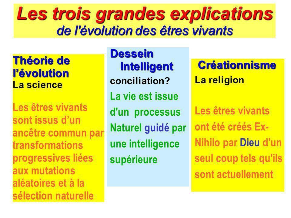 http://slideplayer.fr/slide/176349/