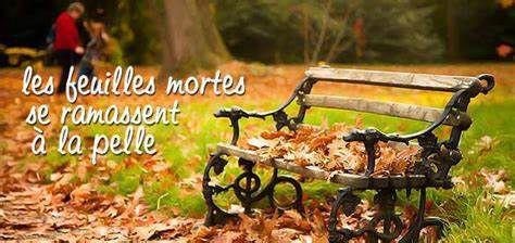 """Les feuilles mortes ..."