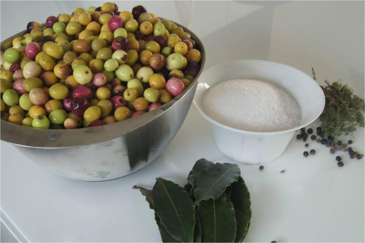 Olives vertes du jardin