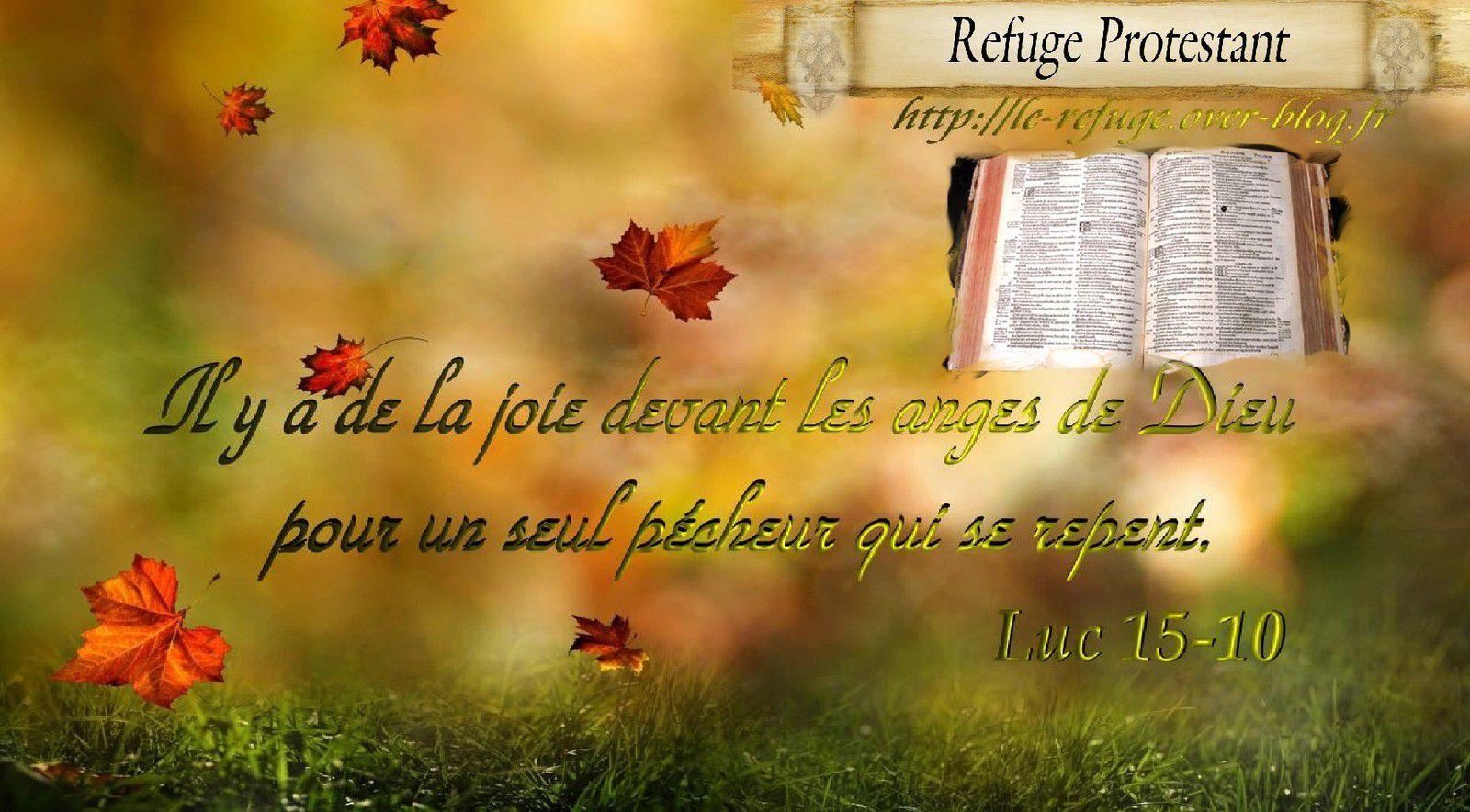 (9f) Versets Biblique en images