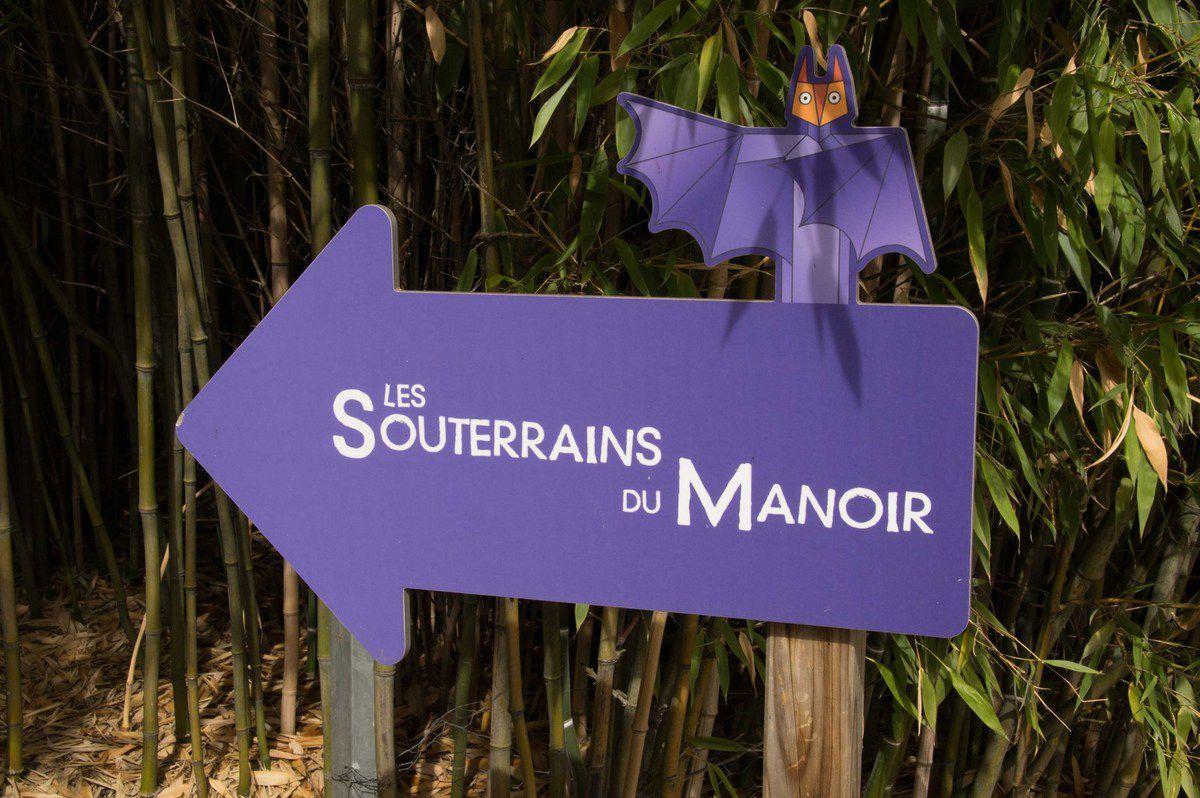 Visite du safari de Peaugres (Ardèche)