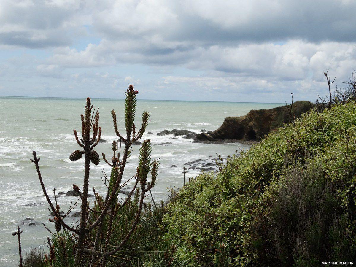 Le littoral de Talmont Saint-Hilaire