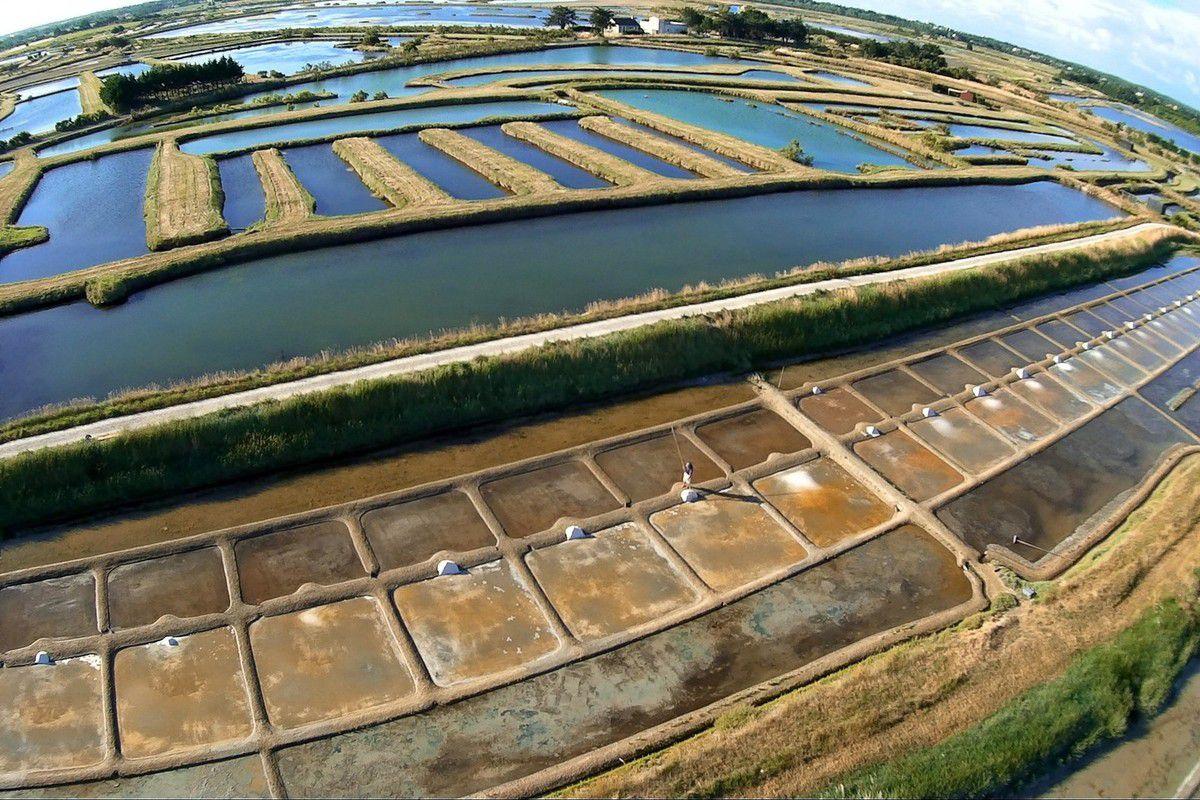 Photos aériennes de la récolte de sel la Salorge à l'île d'Olonne