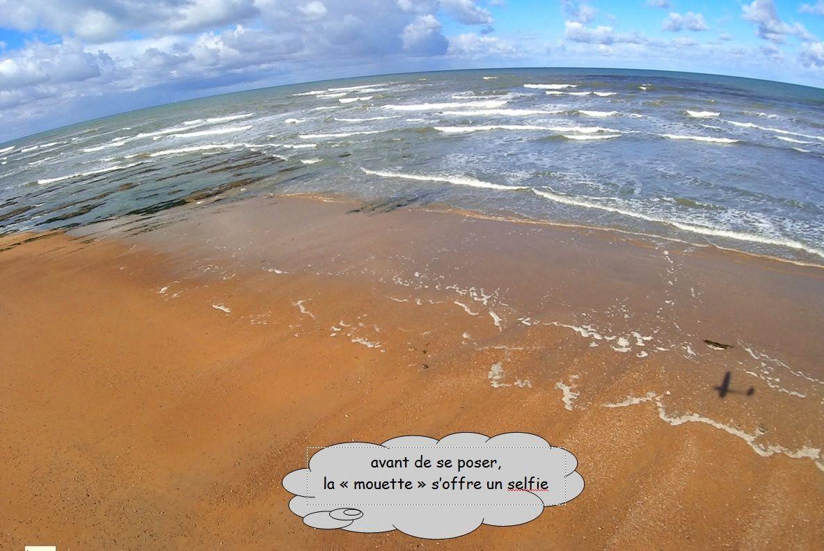 La plage de sauveterre à Olonne s'éveille