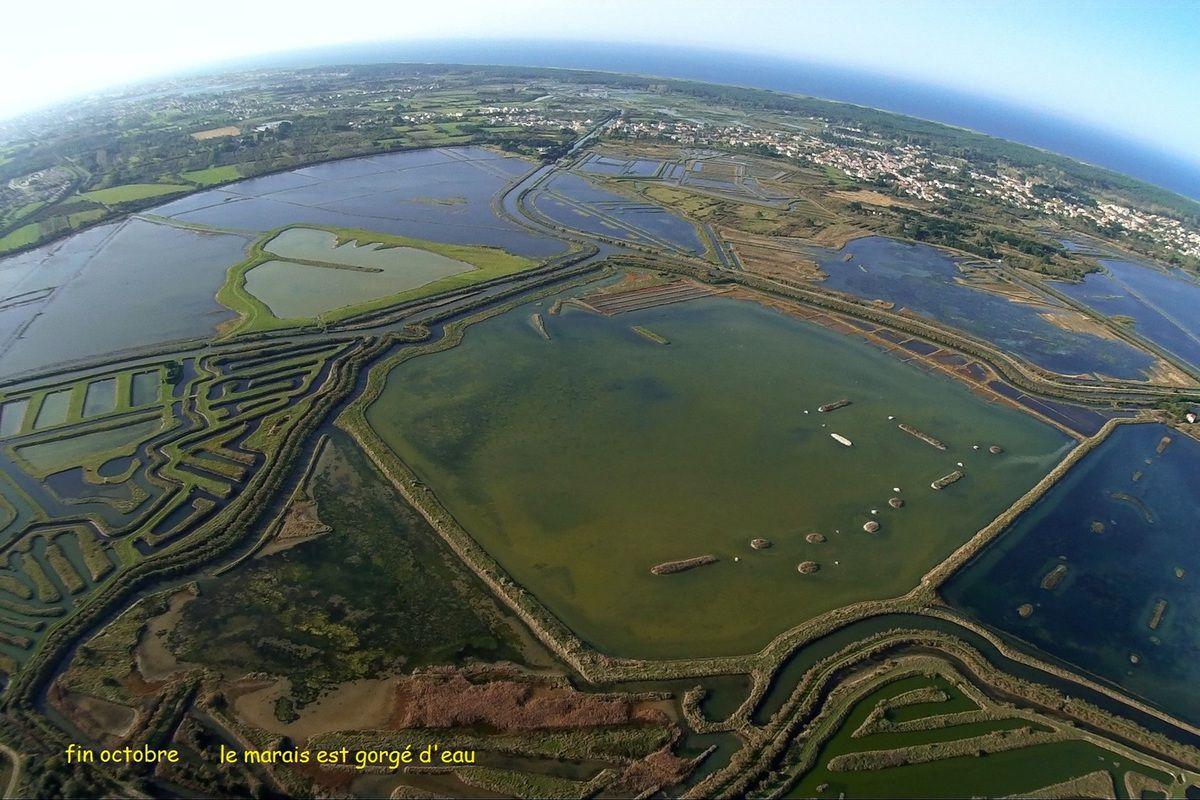 Vues aériennes Assèchement du marais des loirs à Olonne