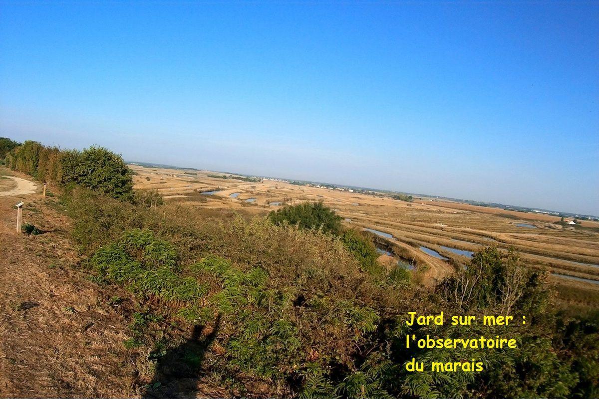 Photos aériennes : les marais de jard sur mer en Septembre