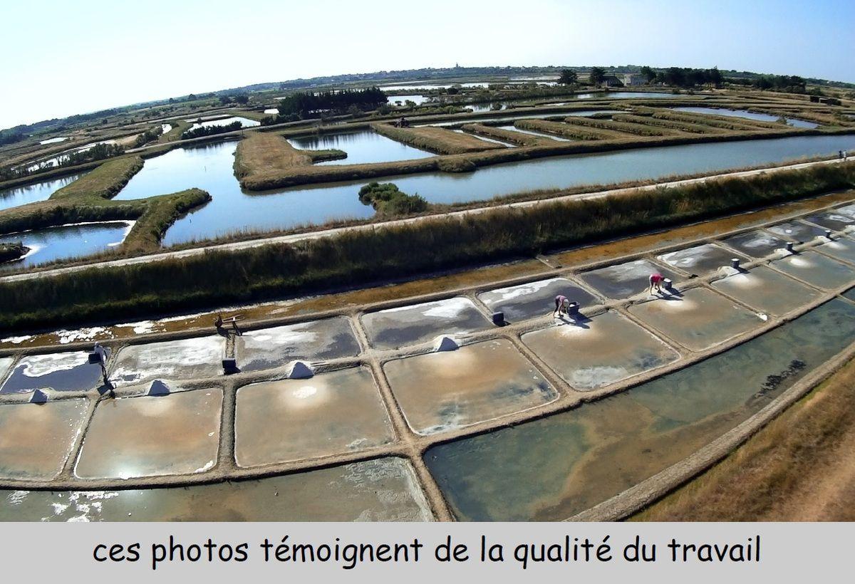 Vues aériennes marais de la salorge à l'Île d'Olonne