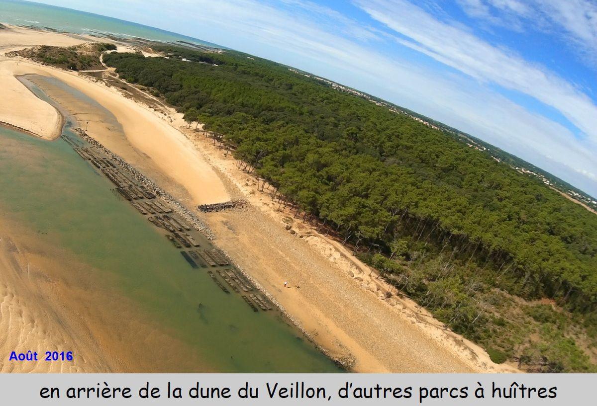 Vue aérienne des parcs ostréicoles de l'estuaire du Payré  à Talmont Vendée