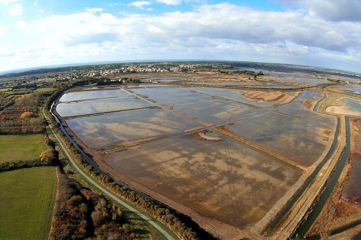 Assèchement du marais des loirs d'Olonne : Complément à précédent article