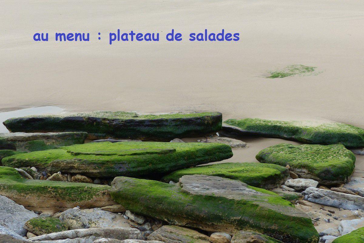Photos du littoral