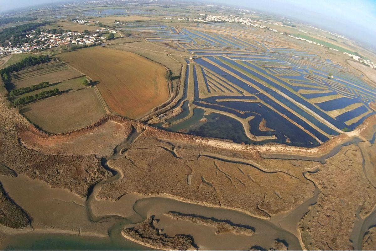 Portes des marais à Poissons : les Essailles