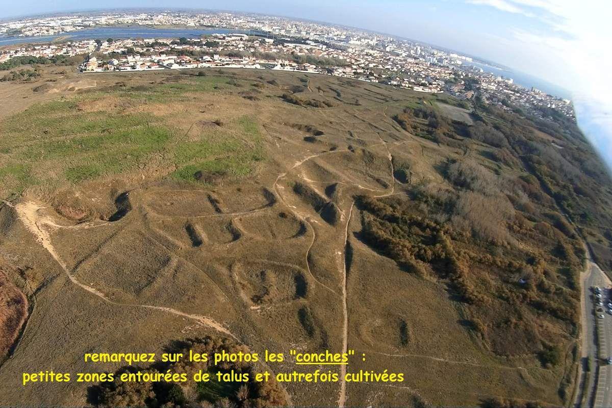 Photos aériennes des zones humides des dune la Paracou aux Sables d'Olonne