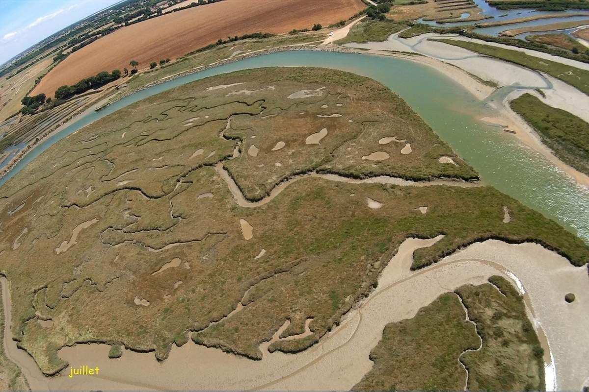 Alluvions du dernier méandre du fleuve Payré