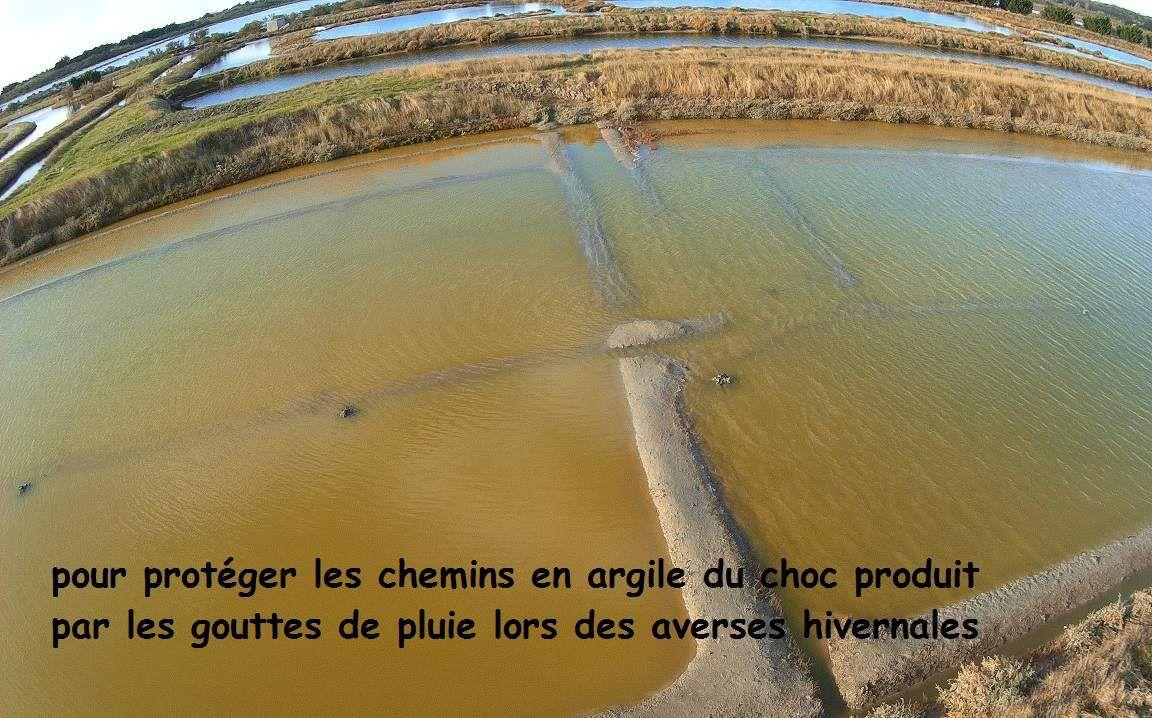Inondation d'automne des marais salants de l'ile d'Olonne
