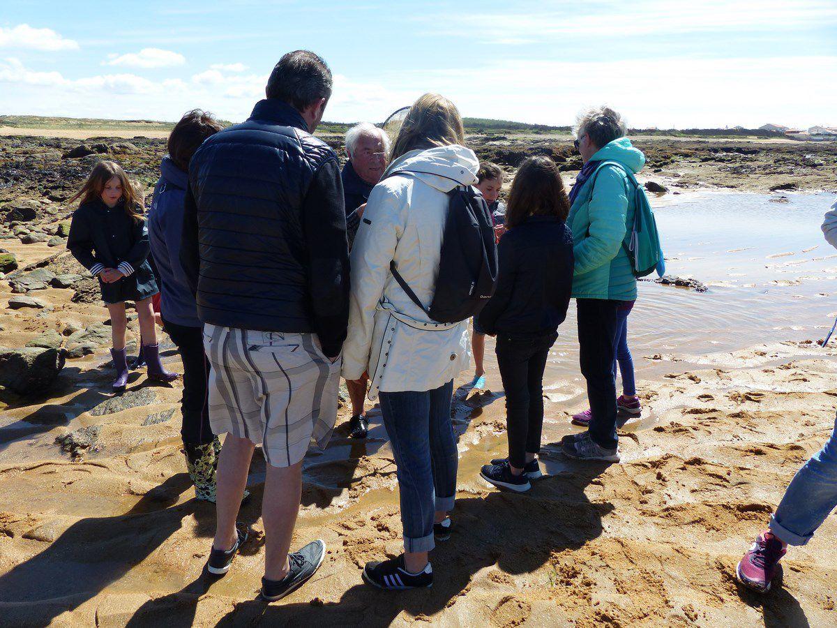 Visite guidée du rivage de la Paracou aux Sables d'Olonne