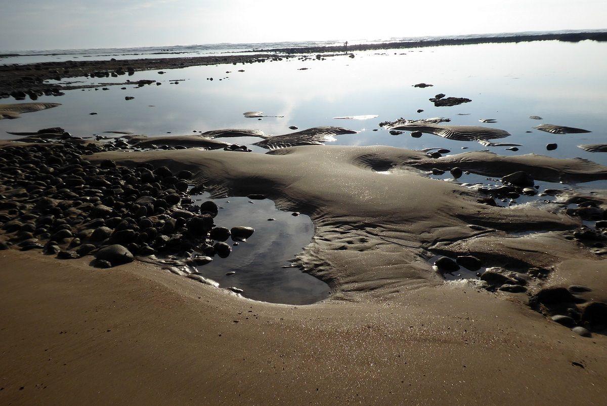 Bas de l'eau sur la plage des dinosaures à Talmont