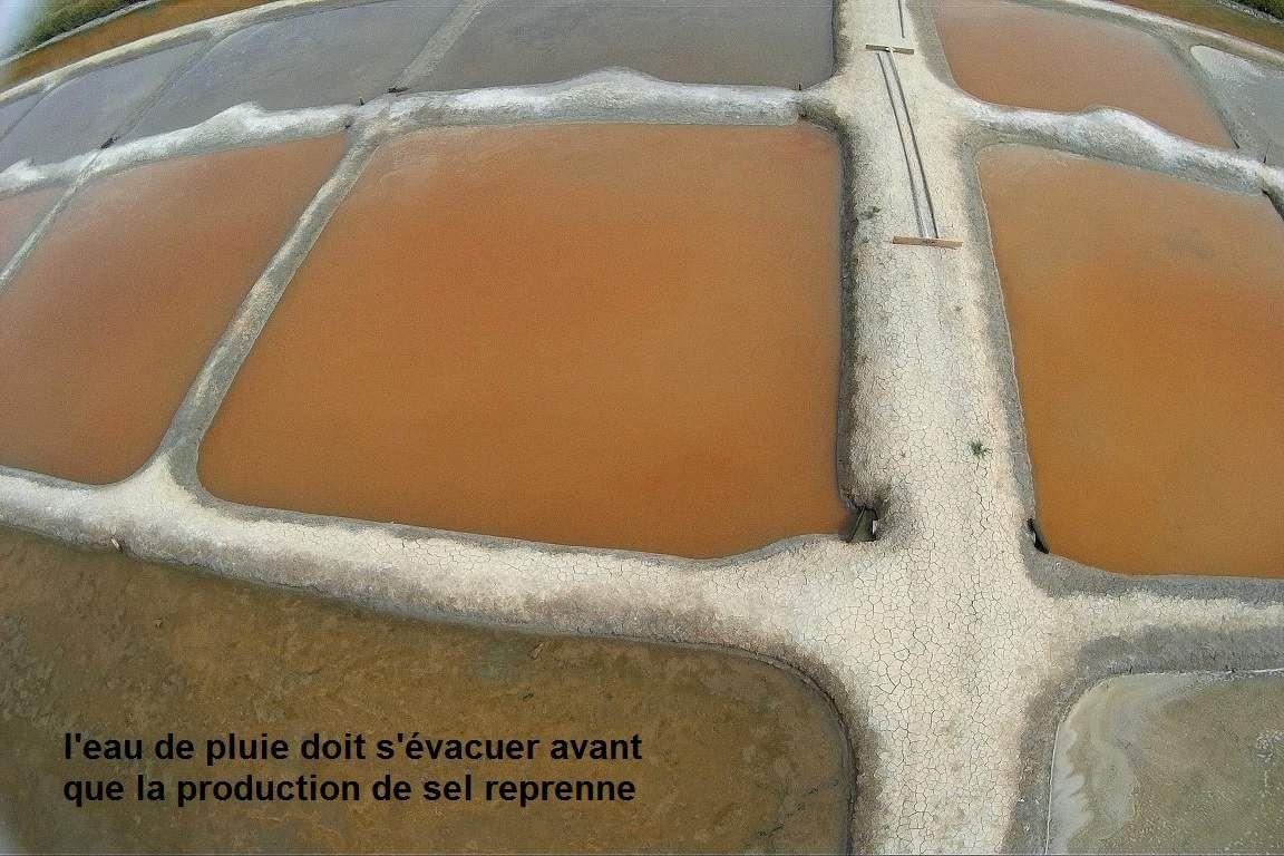 Evolution du marais salant de l'ïle d'Olonne