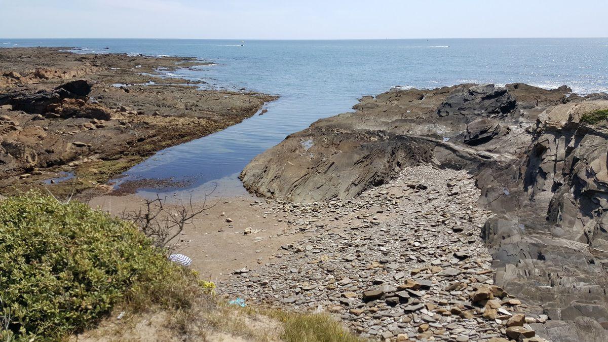 La côte à Talmont Saint Hilaire (Cayola) à marée basse en Août