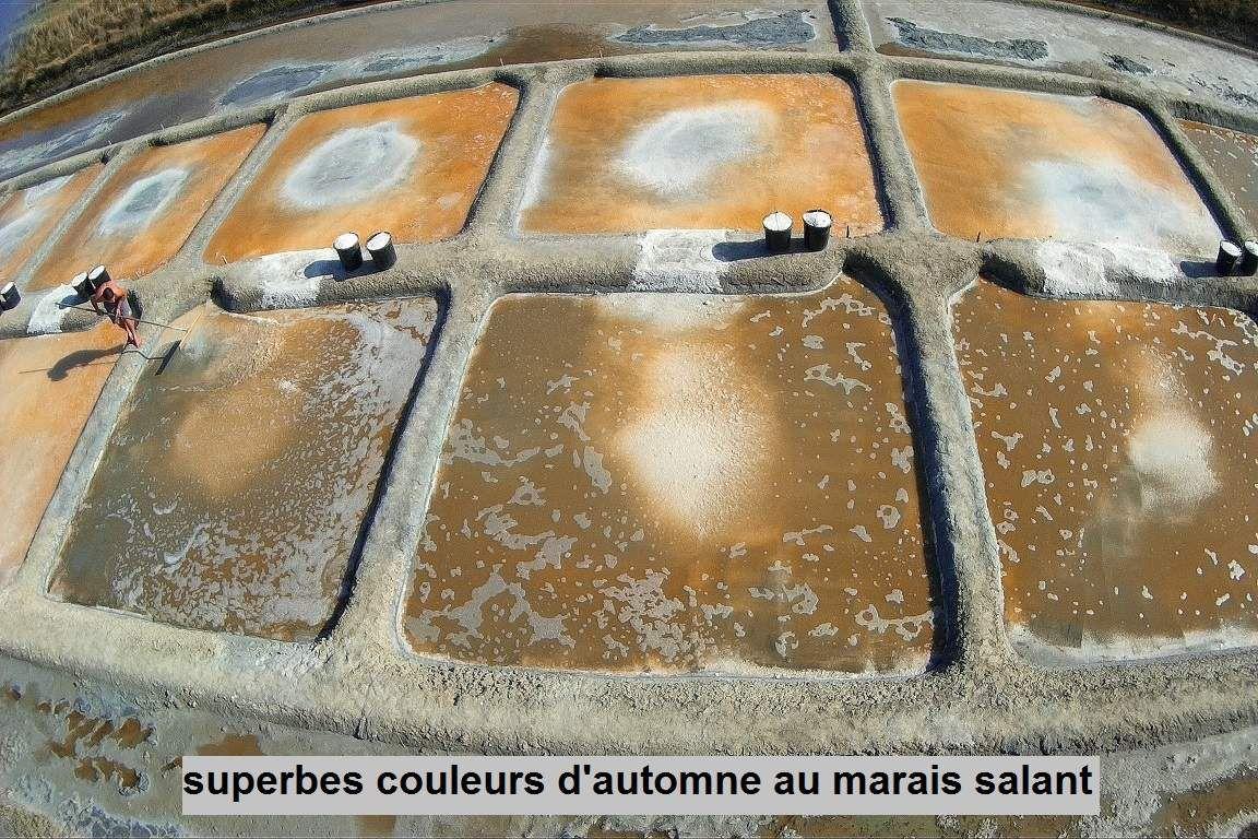 Marais salants de l'ïle d'Olonne en septembre