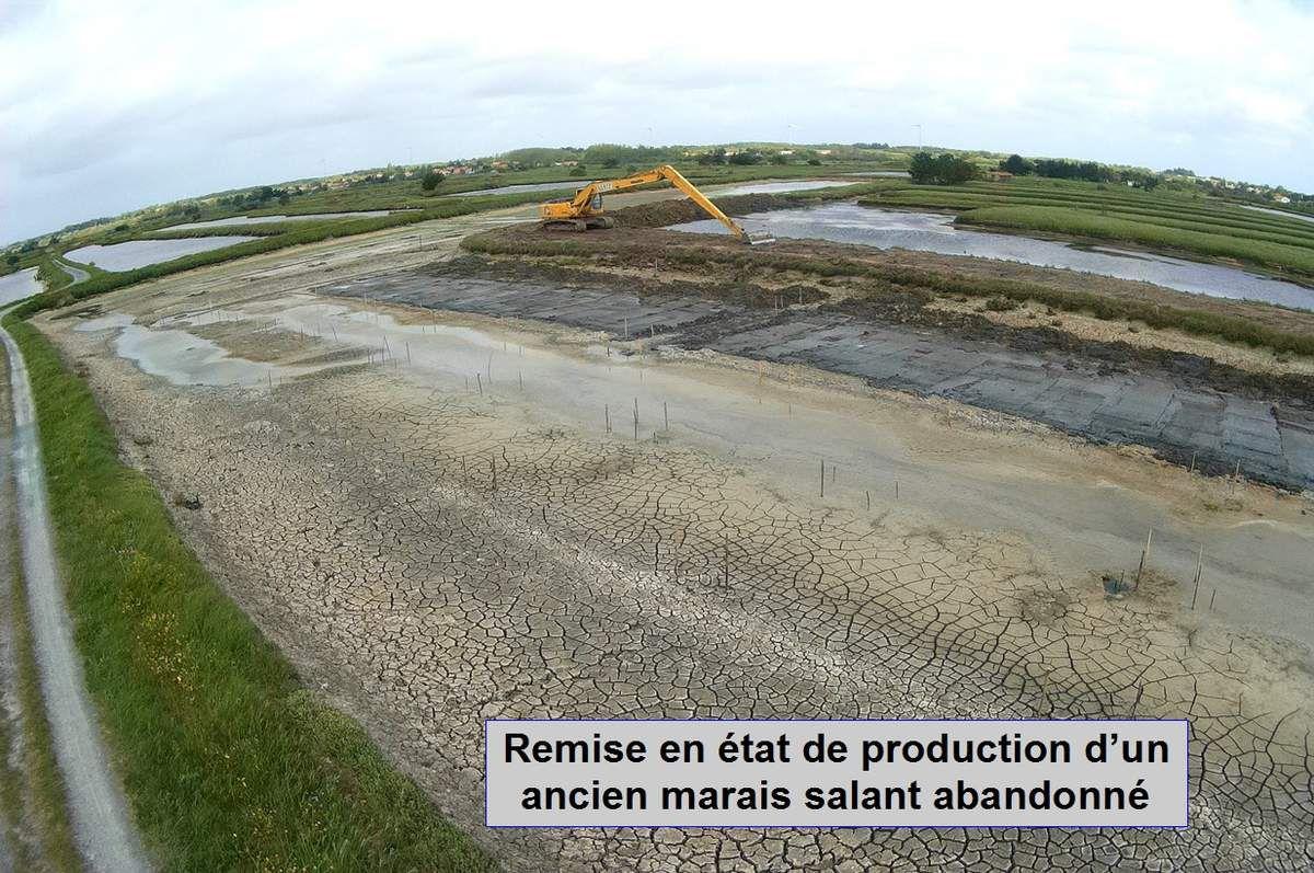 Réhabilitation du marais salant Bois Groland à l'Île d'Olonne