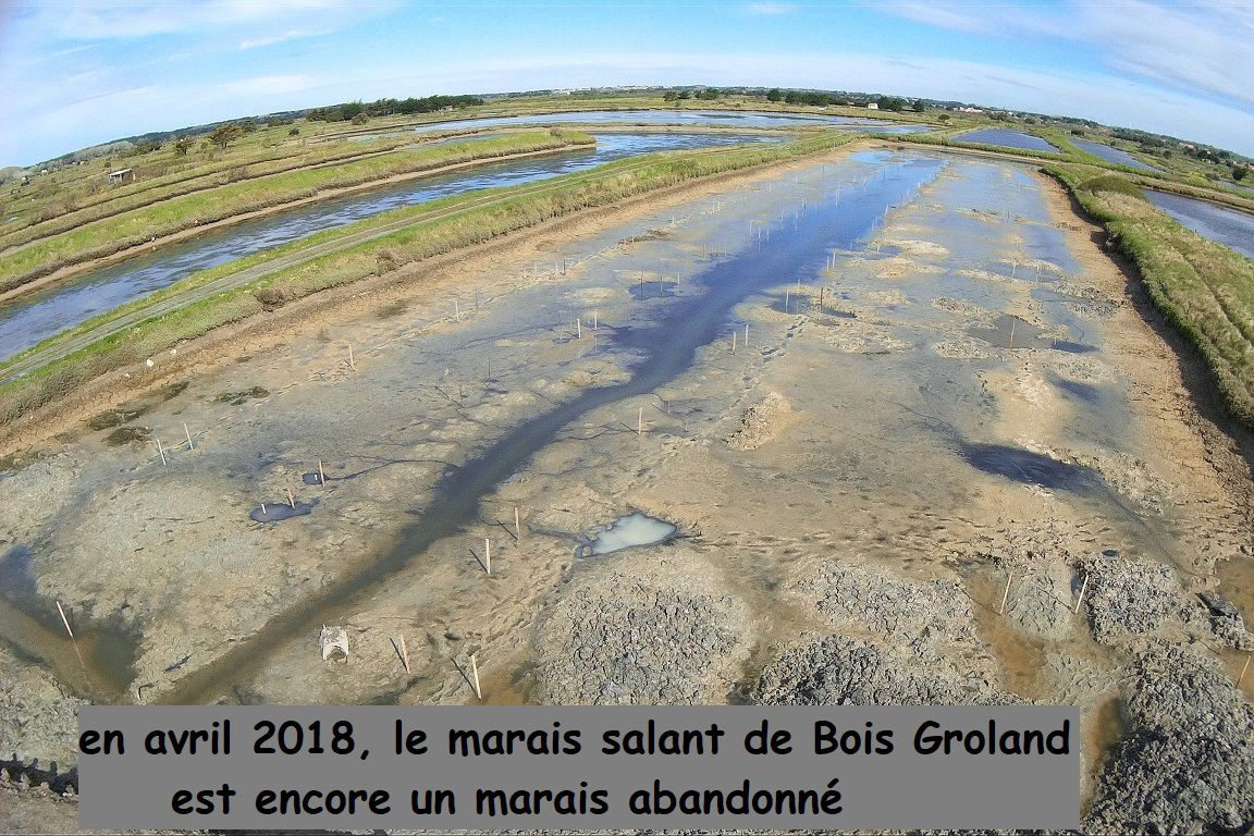 Le marais salant de Bois Groland à l'Île d'Olonne