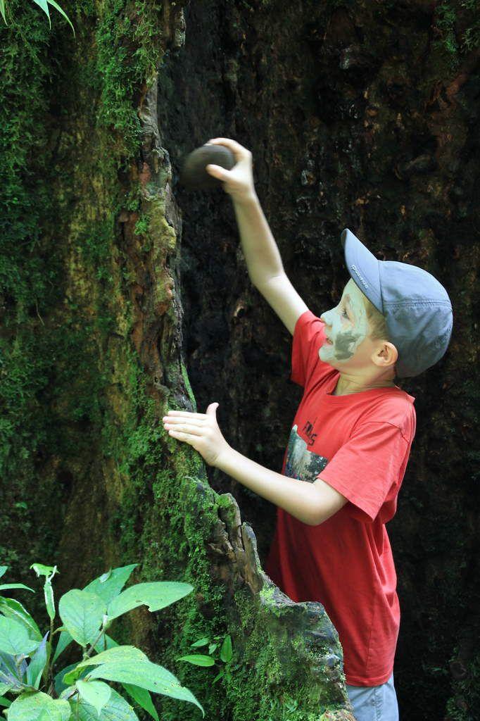 2 jours en Amazonie