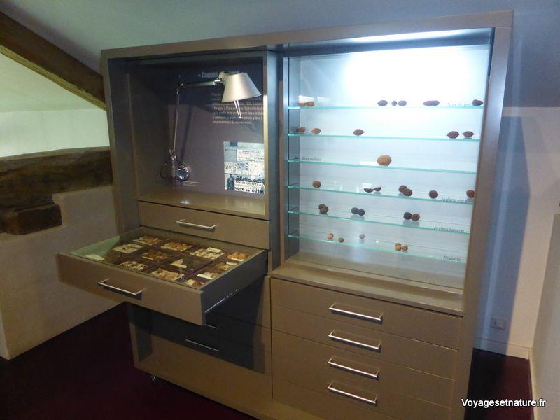 Le musée de la noix de Vinay (38)