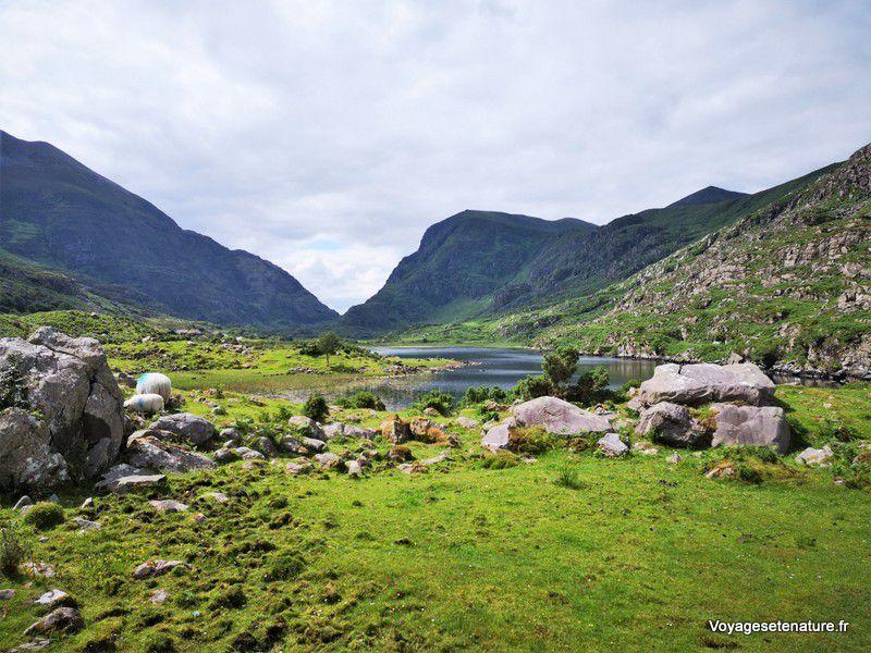 Randonnée dans le Parc National de Killarney