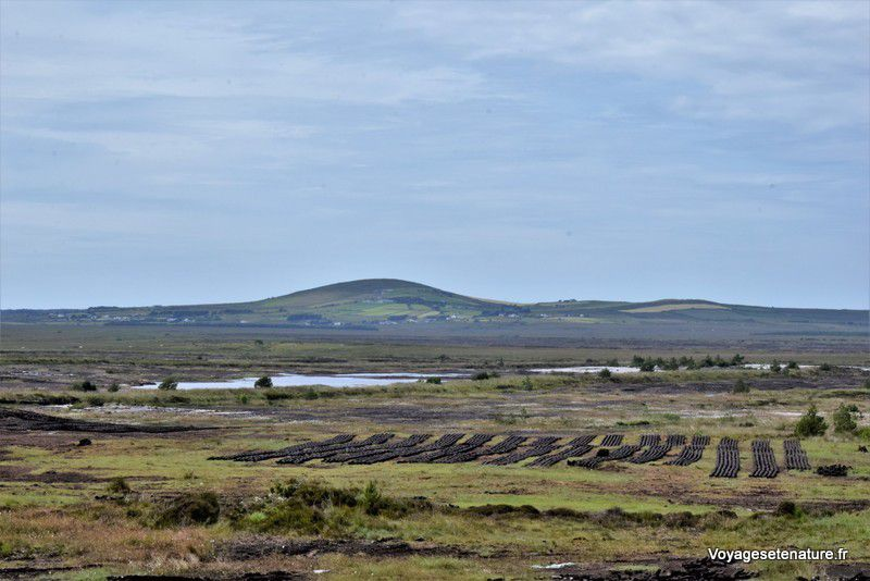 La Wild Atlantic Way de Wesport à Sligo