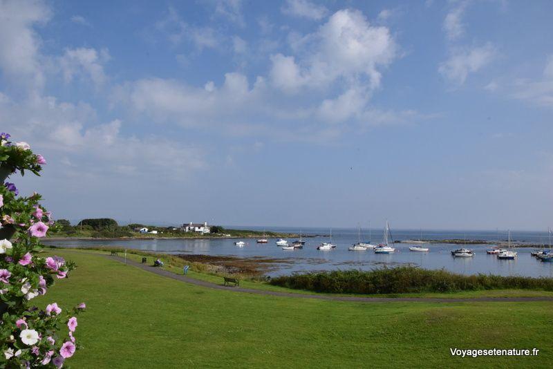 Sur les bords du Strangford Lough