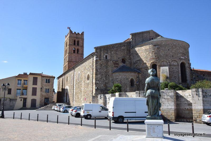 La cathédrale d'Elne (66)