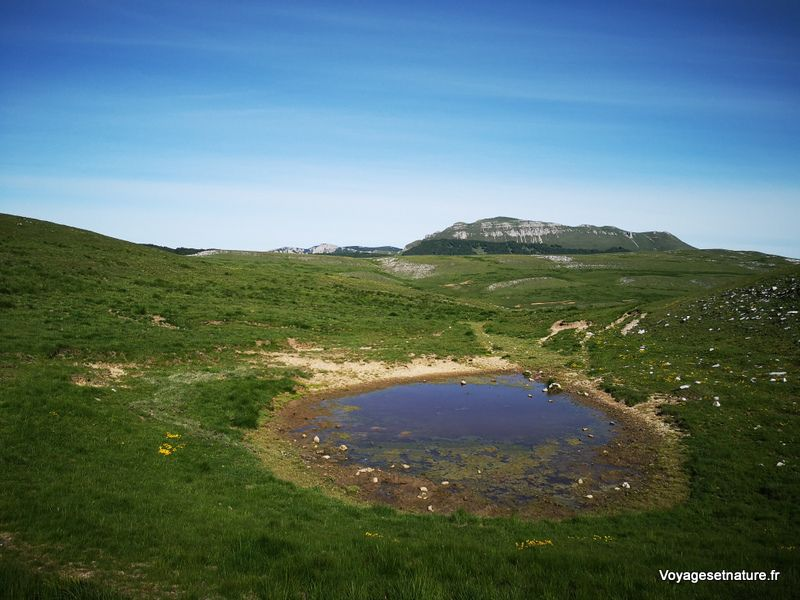 Randonnée sur le plateau d'Ambel (26)