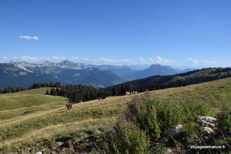 Escapade dans le massif des Bauges