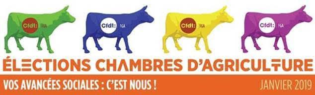 Chambres d'Agriculture : la CFDT, première organisation syndicale de salariés