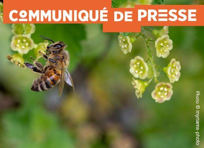 Fonds d'indemnisation des victimes de pesticides : la FGA-CFDT regrette que l'indemnisation des salariés ne soit pas modifiée