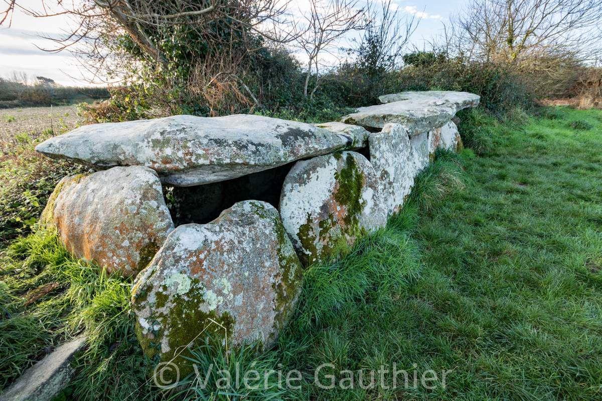 Bretagne : la côte de granit rose