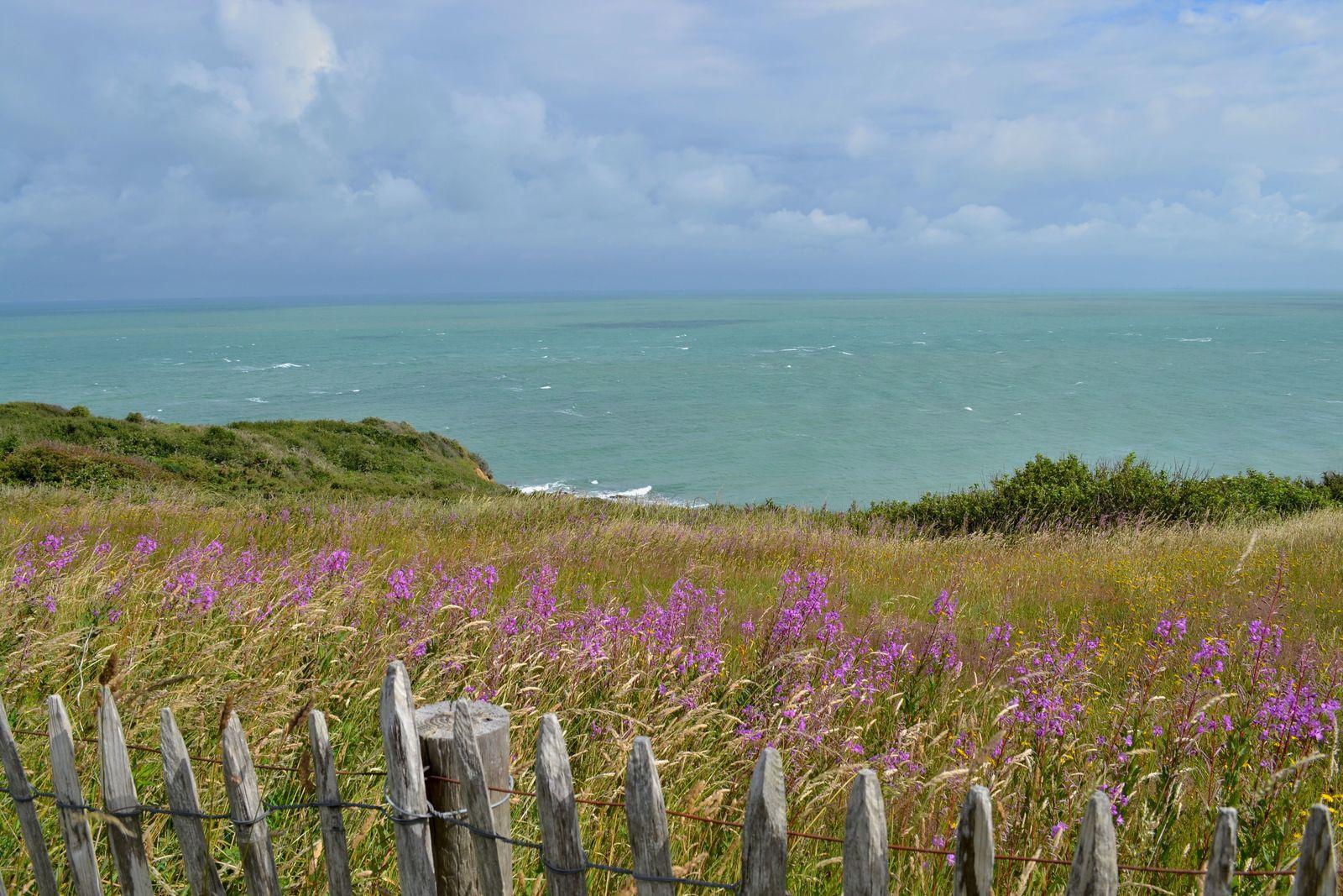 Magnifique rando entre les Caps Gris-Nez et Blanc-Nez sur la Côte d'Opale!