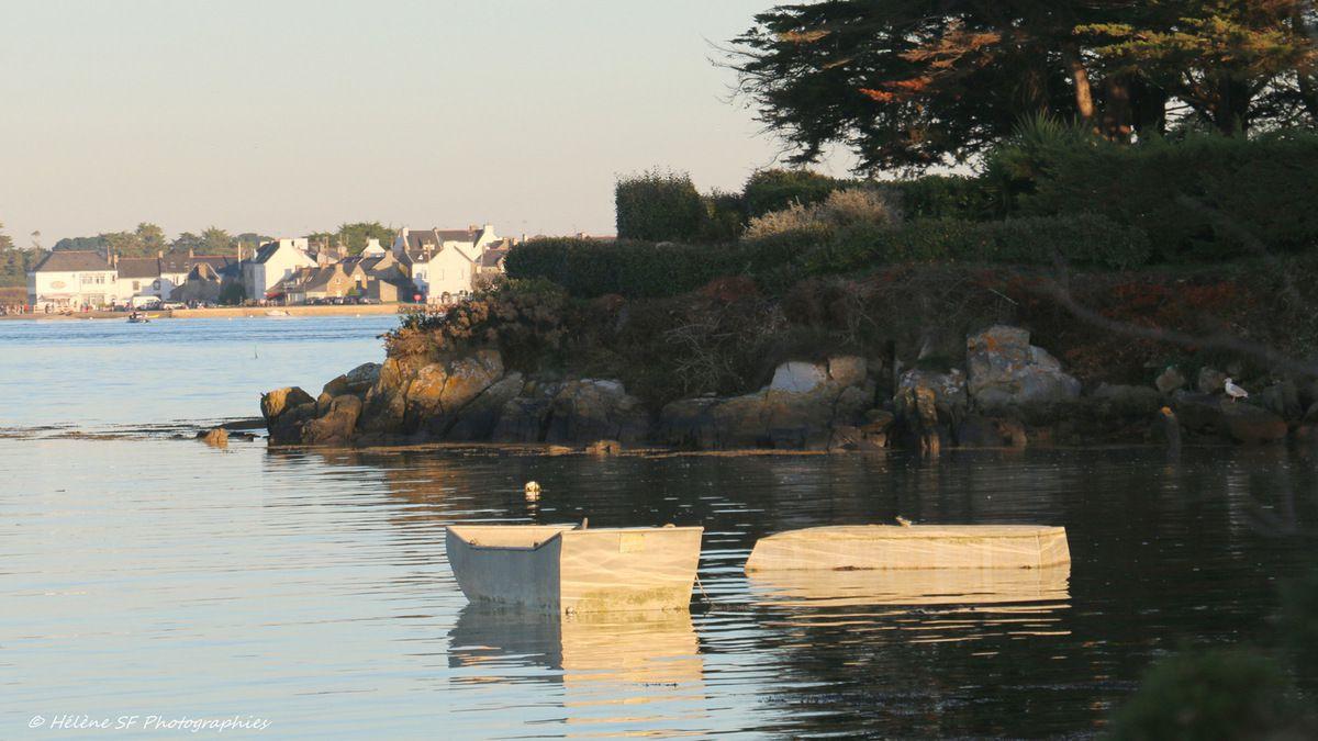 Morbihan, Ria d'Etel: jolie balade de 3 km sur le sentier côtier face à Saint Cado