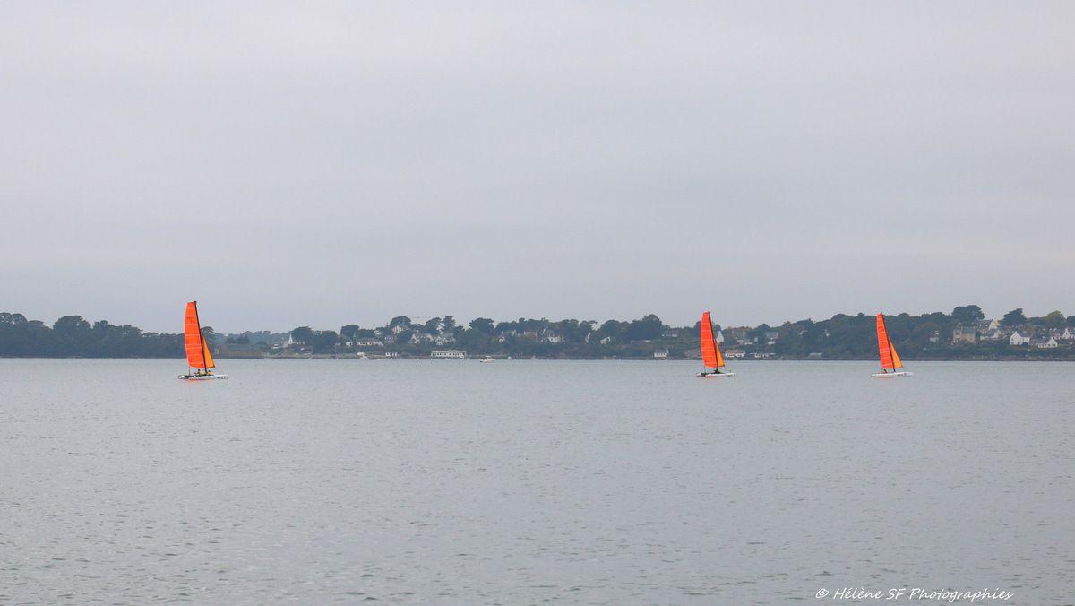 Croisière sur le golfe du Morbihan à l'automne au départ de l'île aux Moines: avis et photos