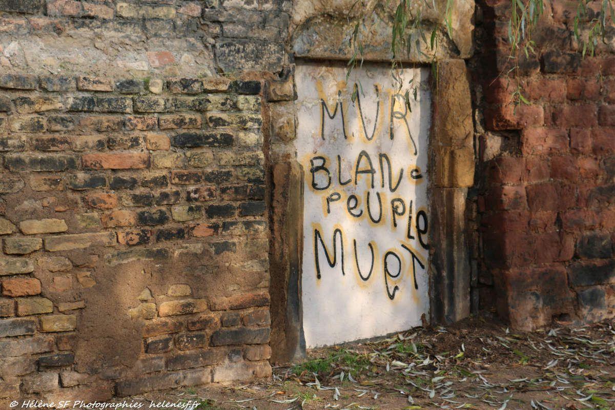 Strasbourg: un circuit pour voir du street art?